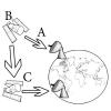 يتم نقل البيانات بين المواقع ( B ) والموقع ( A) في الشكل التالي عن طريق
